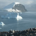 The icebergs in Antarctica