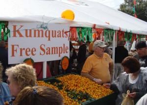 Small citrus kumquats
